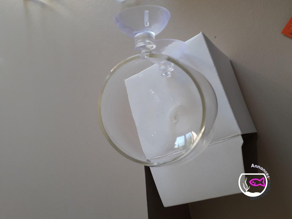 Bocaux cristal avec ventouses pour vos boutures